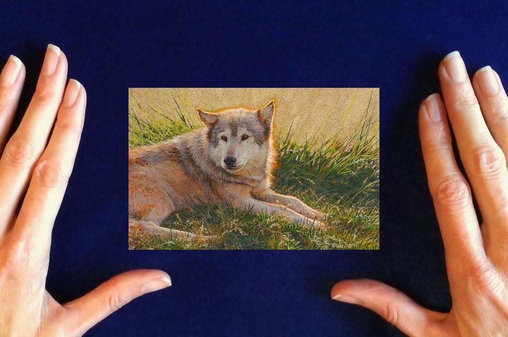Wes and Rachelle Siegrist- Miniature Wildlife Paintings