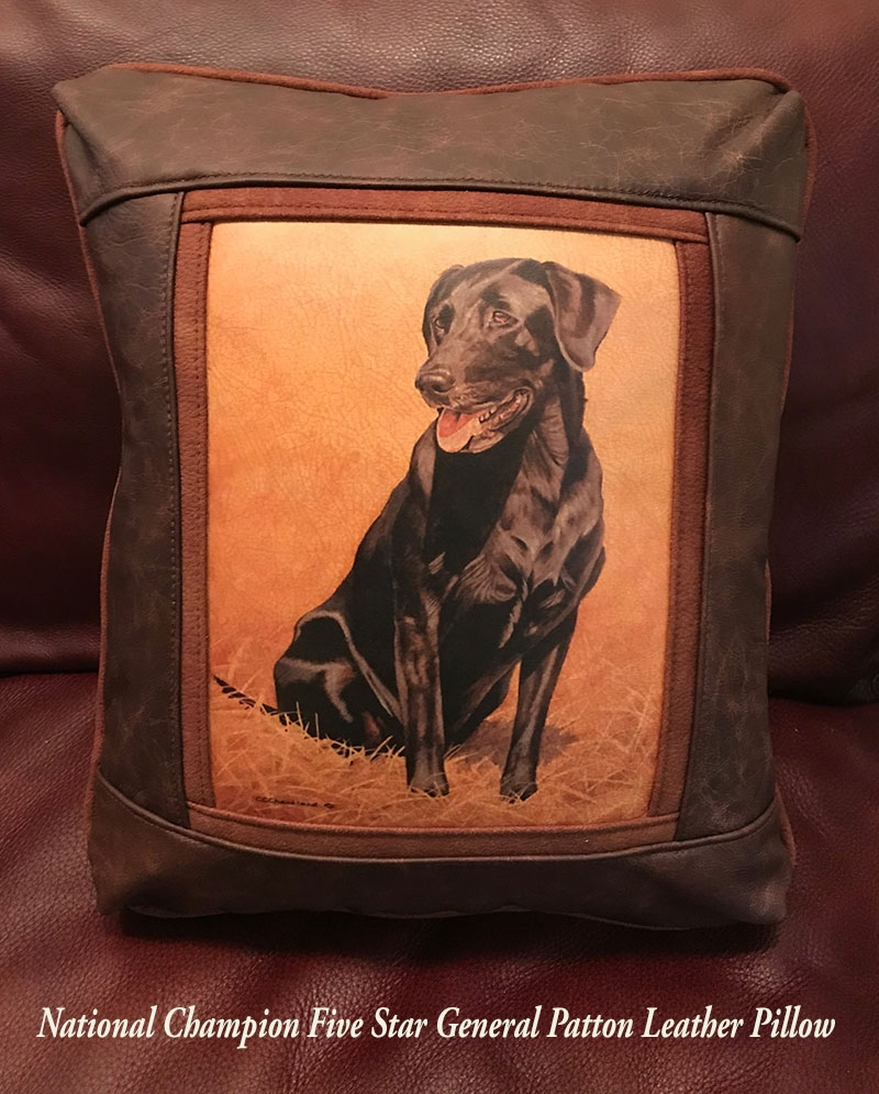 Sweetwater Trading Company Pillows