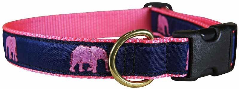 Dog Collars & Leads