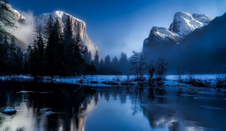 Americana & Nature Art