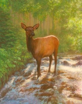 Mule Deer watercolor painting by Rachelle Siegrist