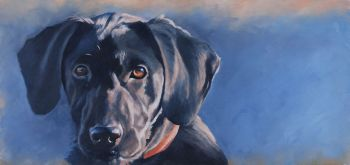 All ears Oil Painting - of a Black Lab Puppy by Chris Chantland