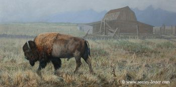 Moving On is the name of an original painting of an American Buffalo by Suzie Seerey-Lester