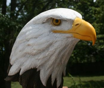 Bald Eagle Bust wood carving by Randal Martin