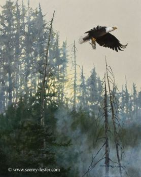 Supreme Commander is an original oil painting of a Bald eagle by Suzie Seerey-Lester