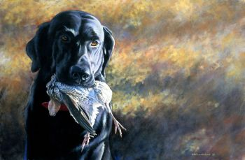 Midge's Passion is a giclee print of a black lab with bagged quail by Chris Chantland