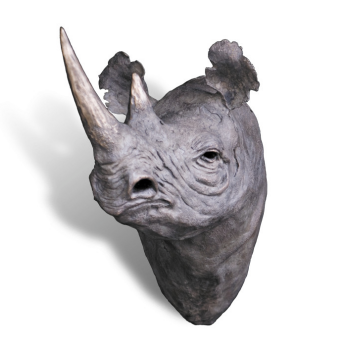 Black Rhino Bronze Sculpture Wall Mount by John Tolmay