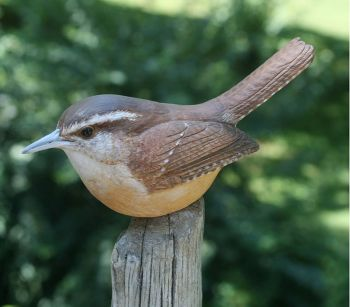 Carolina wren wood carving by Randal Martin