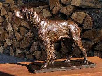Instinct - a life-sized English Pointer Bronze Sculpture by Liz Lewis