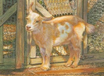 Goat miniature painting by Wes Siegrist