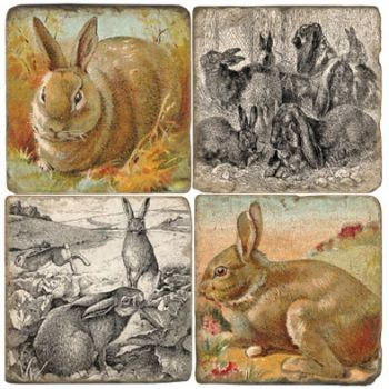 Hare Coasters set of 4 Italian Marble Coasters