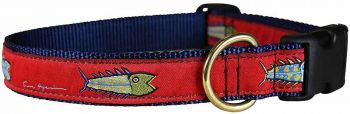 Belted Cows Hopkins Fish with red background dog collar