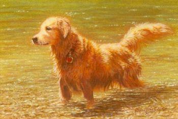 Golden Retriever miniature watercolor painting by Rachelle Siegrist