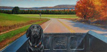 Black Lab riding in vintage Ford truck through Leelanau County, Michigan by Chris Chantland