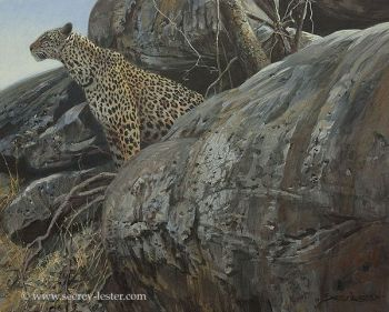 Leopard Gaorge Acrylic Painting by John Seerey-lester
