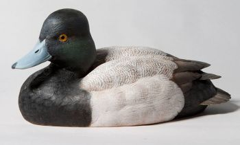 Lesser Scaup wood carving by Randal Martin