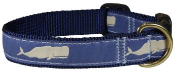 Belted Cow Moby Whale one inch dog collar - blue