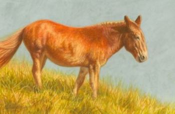 Mule in the Warm Sun Miniature Painting by Rachelle Siegrist