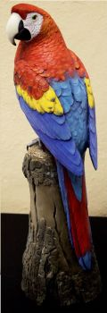 Scarlet Macaw wood carving by Randal Martin