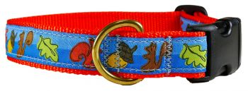 Squirrel one inch dog collar by Belted Cow