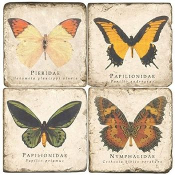 Butterflies I Italian Marble Coaster (Each or Set of 4) Studio Vertu