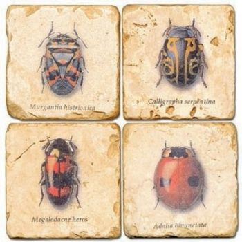 Classic Bugs Italian Marble Coaster (Each or Set of 4) Studio Vertu