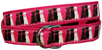 Three labs D Ring Belt by Belted Cow
