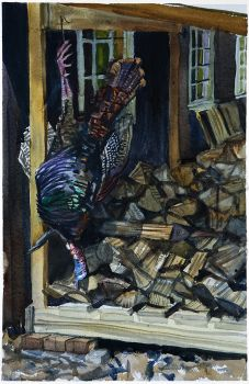 Wood Shed Gobbler - an original watercolor painting by CD Clarke